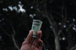How Much Do You Overpay for Influencer Marketing