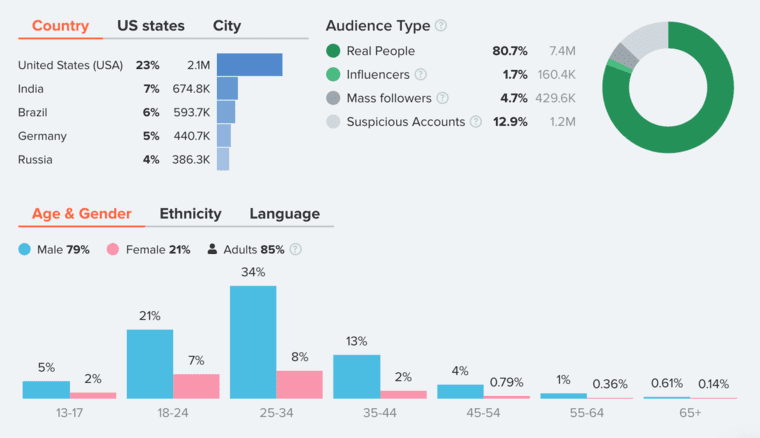 Audience Demographics in HypeAuditor Account Analytics